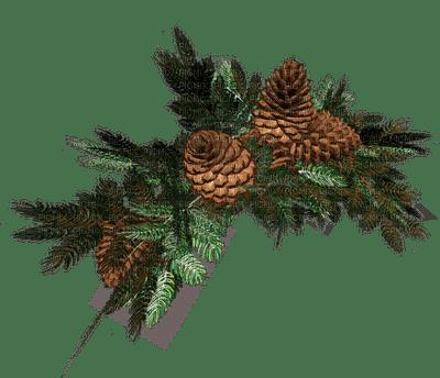 branch Winter_branche hiver