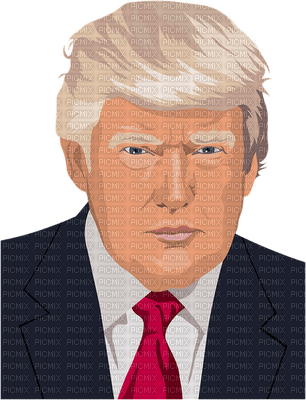 Kaz_Creations Donald Trump