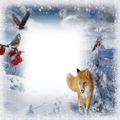 winter frame with fox - Winter Picture Frames