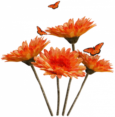 Fleur.Flowers.Orange.Papillon.Butterflies.Deco.Victoriabea