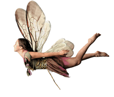Ange qui vole