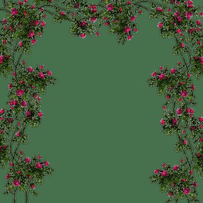 rose fleur  cadre  flower roses frame