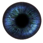 Kaz_Creations Eyes Eye Colours
