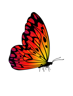 Kaz_Creations Butterflies Butterfly