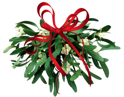 Mistletoe-Kissing-Ball PNG