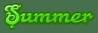 SUMMER TEXT GREEN texte vert