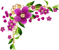 pink flower corner  deco pink fleur coin
