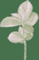 Leaves.Feuille.Branch.branche.Deco.Plants.plante.Victoriabea