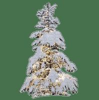 pine tree snow winter sapins neige
