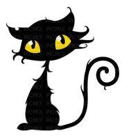 WITCH CAT BLACK CHAT HALLOWEEN