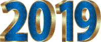 new year 2019 silvester