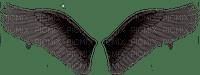 wings angel