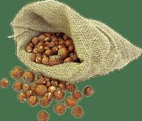 autumn-höst-kastanjer-säck