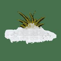 cecily-herbe neige