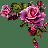 Angle ou coin roses et papillon