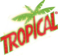 tropical text orange