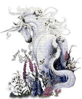 UNICORN fantasy  licorne fantaisie