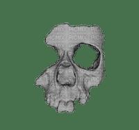 skull bp