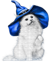 soave cat halloween witch deco black white blue