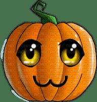 pumpkin Bb2