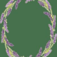 lavender flower  frame cadre lavande fleur
