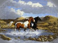 Kaz_Creations Paysage Scenery Horses Horse