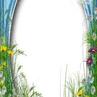 spring flower frame border printemps cadre fleur bordure