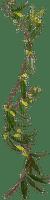 Plants.Border.Deco.plante.Victoriabea