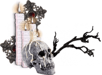 Gothic.Skull.crâne.Candles.Victoriabea