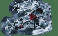 snowberries  winter baies de neige