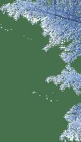 Plants.blue.winter.hiver.Victoriabea