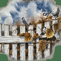 autumn birds oiseaux automne
