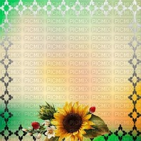 fond-background-encre-tube-cadre floral -decoration-tube-image-green and yellow_ cadre Sunflower_decoration -Blue DREAM 70