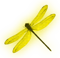 Dragonfly.Yellow