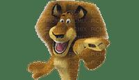 lion alex madagascar