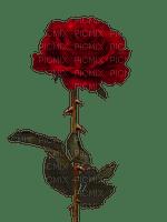 Trandafir 29