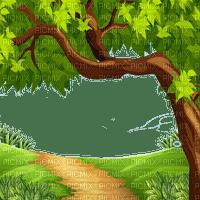 paysage foret nature   bg forest natur