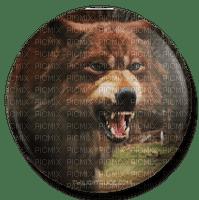 werewolf twilight new moon  jacob