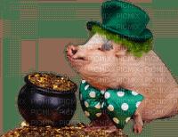 Kaz_Creations Pig