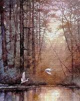 Paysage.Landscape.Brown.lake.Lac.Forêt.Automne.Autumn.Victoriabea