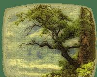 paysage/landscape