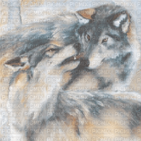 wolf bg painting transparent