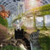dog bunny squirrel surreal animal city background effect fond  hintergrund
