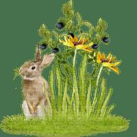 Kaz_Creations Flowers Deco Flower Colours Garden Deco