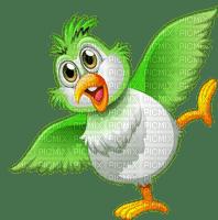 bird oiseaux