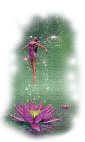 fairy lotus fee nenuphar