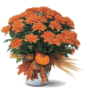 automne décoration fleurs__Blue DREAM 70