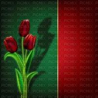 image encre couleur anniversaire mariage texture fleur tulipes  edited by me