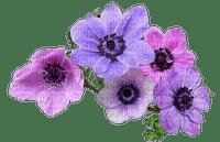 spring printemps flower fleur blossom fleurs blumen  tube frühling primavera весна wiosna