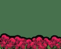 cadre roses rose effect  decoration décoration smiraikun smkstan6 smkstancadre